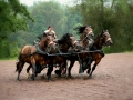 Platz Nr. 22 'Pferdewagenrennen' (Helmut Lippert)