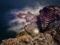 Platz Nr. 31 'Treppe am Meer' (Erik Mattern)