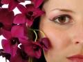 Platz Nr. 35 'Orchideen' (Erik Mattern)